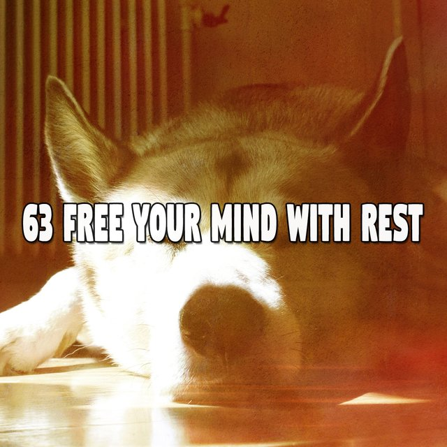 63 Free Your Mind with Rest