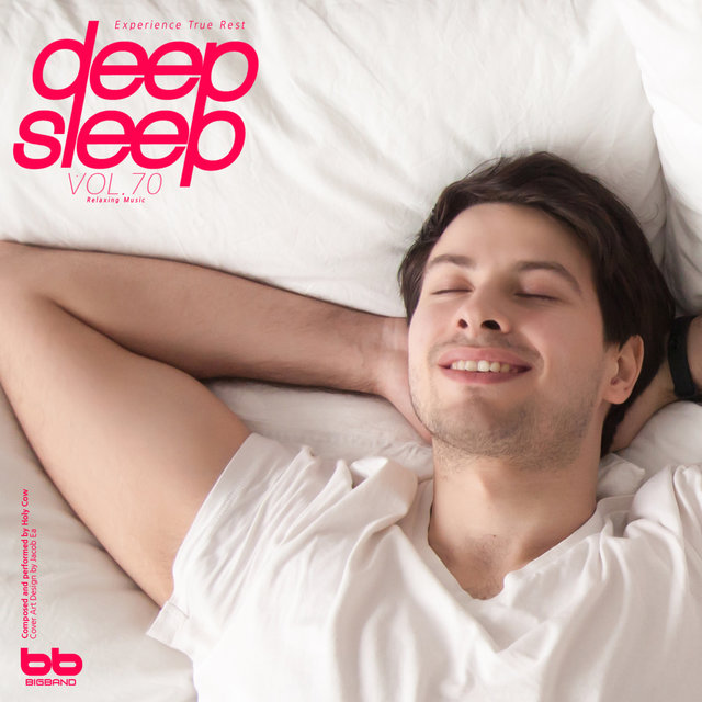 Deep Sleep, Vol. 70(Relaxation,Relaxing Muisc,Insomnia,Meditation,Lullaby,Prenatal Care,Healing)