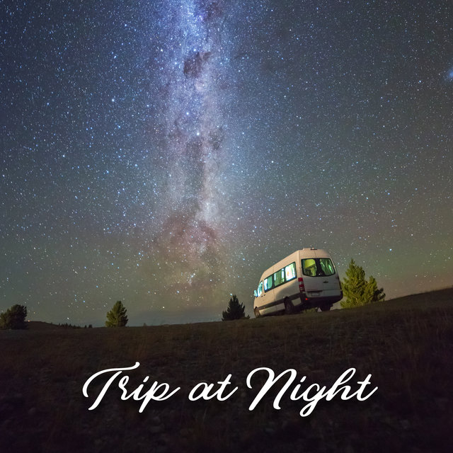 Trip at Night – Tropical and Summer Chillax Adventure