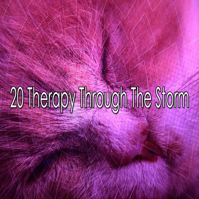 20 Therapy Through the Storm