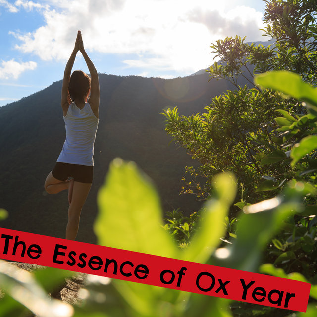 The Essence of Ox Year - Start a Chinese New Year Meditating, Doing Yoga and Practicing Self-Care