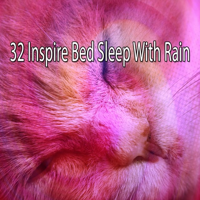 32 Inspire Bed Sleep with Rain