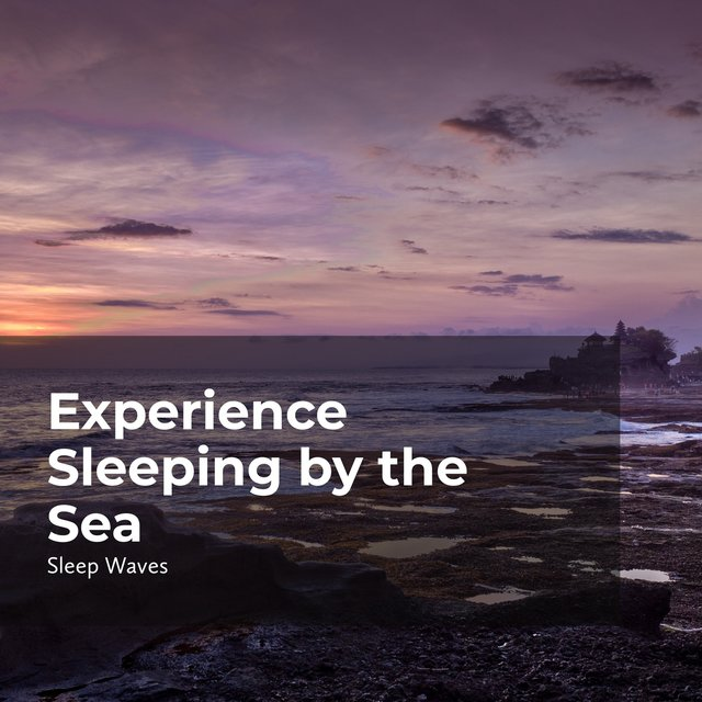 Experience Sleeping by the Sea
