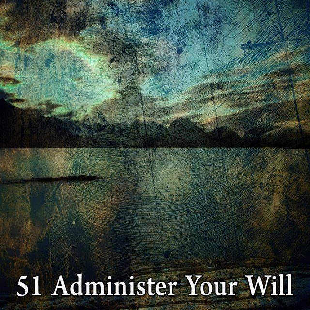 51 Administer Your Will