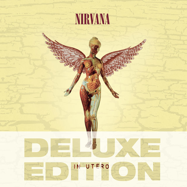 In Utero - 20th Anniversary Deluxe Edition