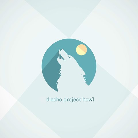 D-echo Project