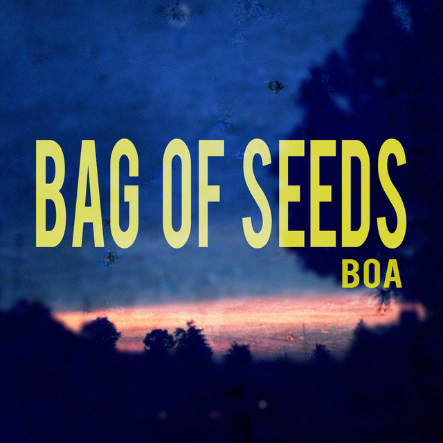Bag of Seeds