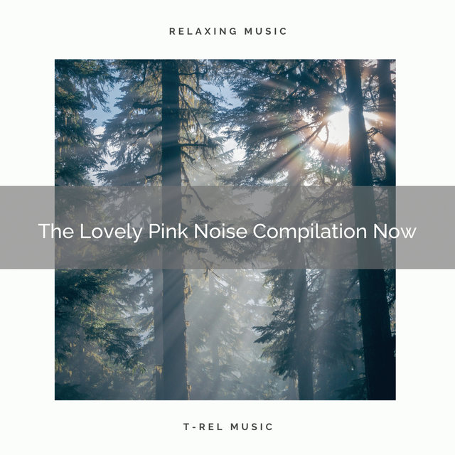 The Lovely Pink Noise Compilation Now