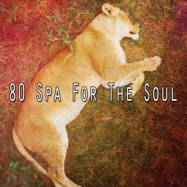80 Spa for the Soul