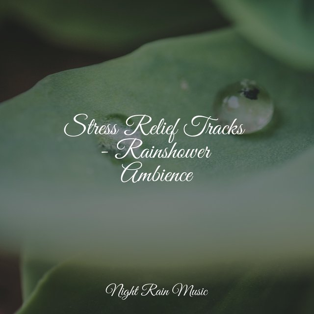 Stress Relief Tracks - Rainshower Ambience