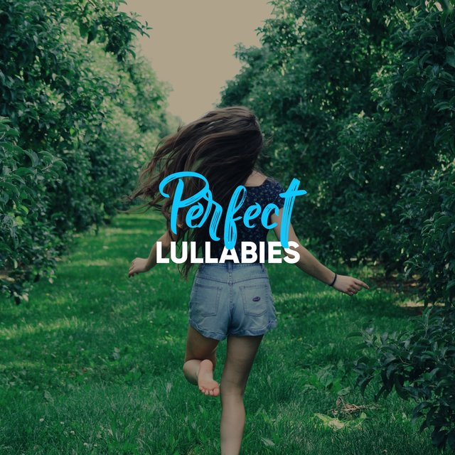 # 1 Album: Perfect Lullabies