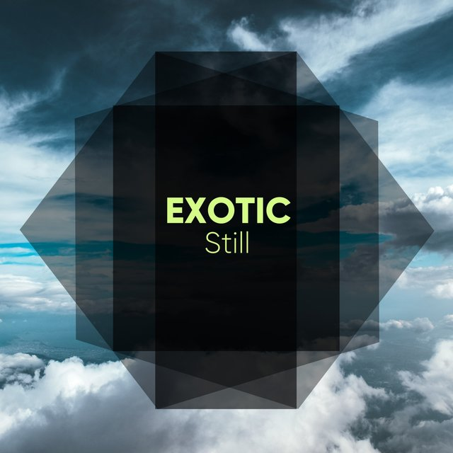 # 1 Album: Exotic Still