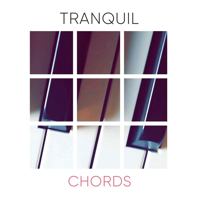 Tranquil Evening Chords