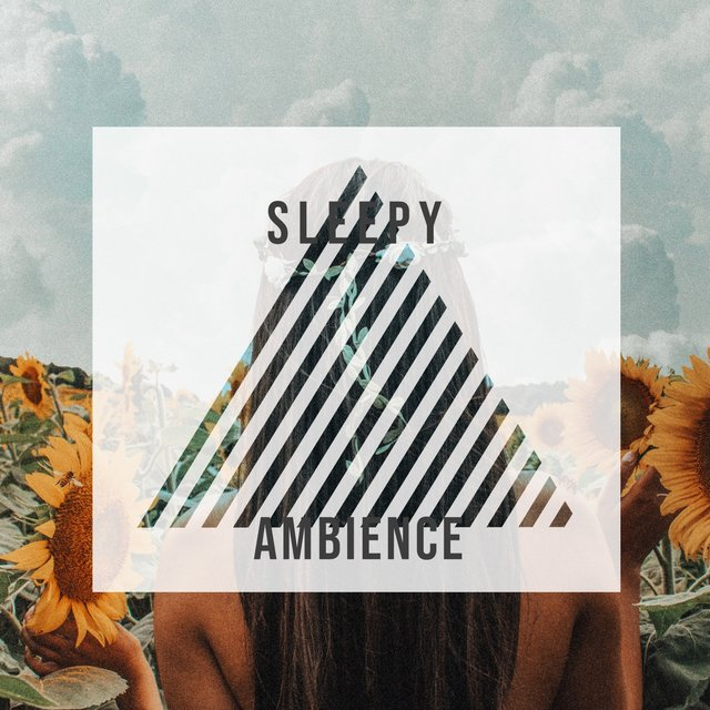 # 1 Album: Sleepy Ambience