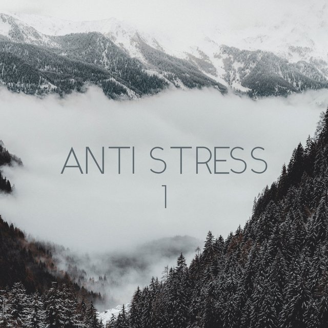 Anti Stress, Vol. 1