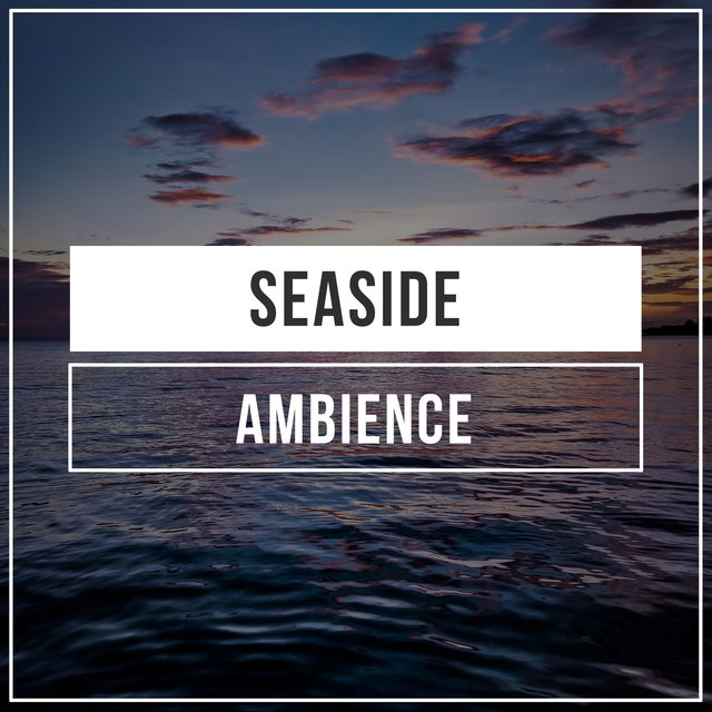 # 1 Album: Seaside Ambience