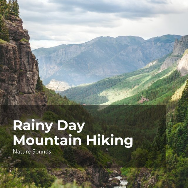 Rainy Day Mountain Hiking