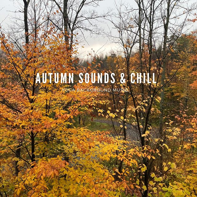Autumn Sounds & Chill