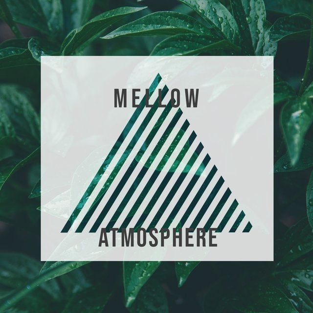 # 1 Album: Mellow Atmosphere