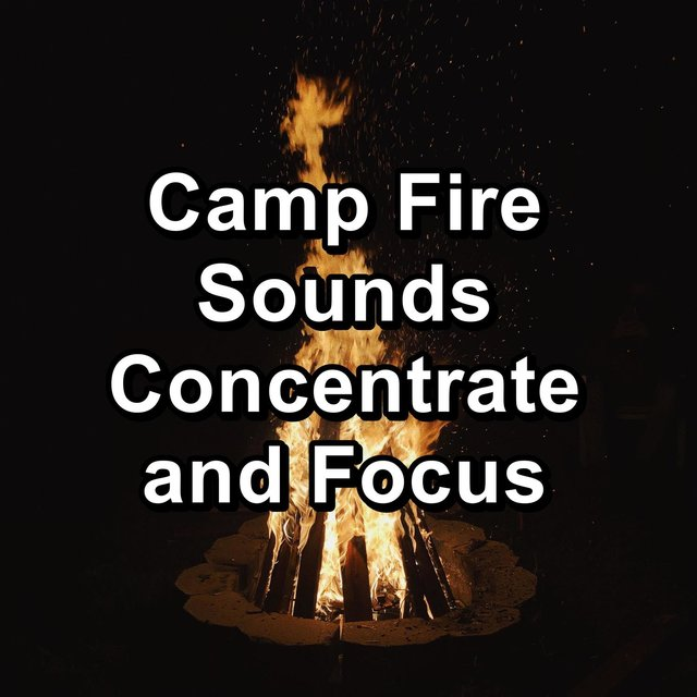 Camp Fire Sounds Concentrate and Focus