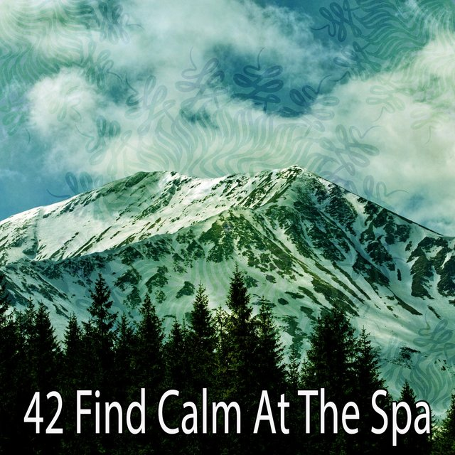 42 Find Calm at the Spa