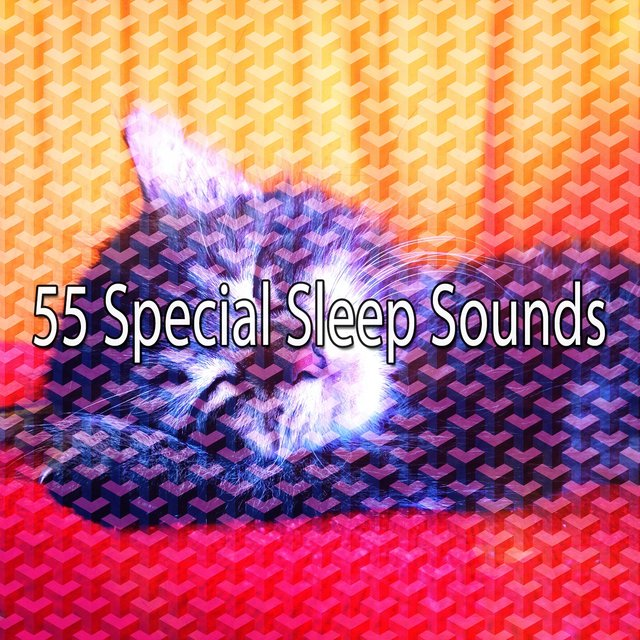 55 Special Sleep Sounds