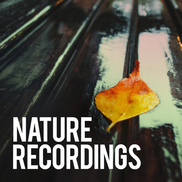 Nature Recordings