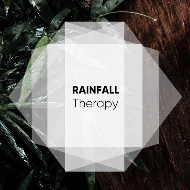 Gentle Rainfall Studio Therapy