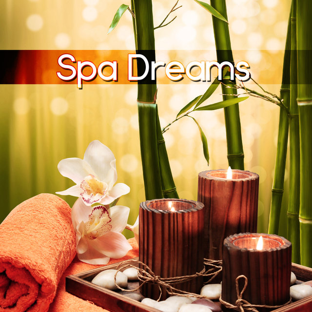Spa Dreams - Welness Nature Sounds, Music Therapy for the Heart, Sea Waves for Massage, Yoga & Sauna