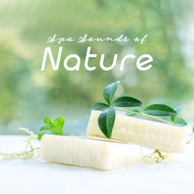 Spa Sounds of Nature: Collection of Best 2019 Nature & Piano Music for Spa & Wellness Centers, Background for Healing Treatments and Relaxing Massage