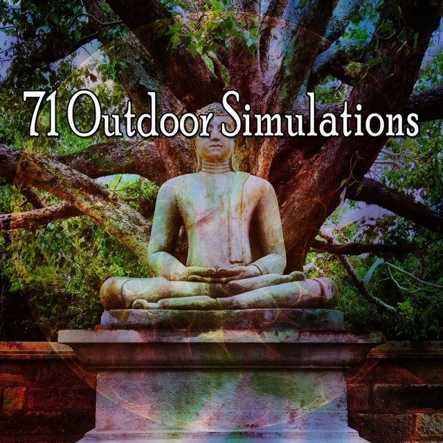 71 Outdoor Simulations