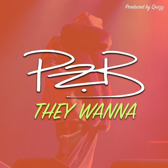 Cover art for album They Wanna by PZB