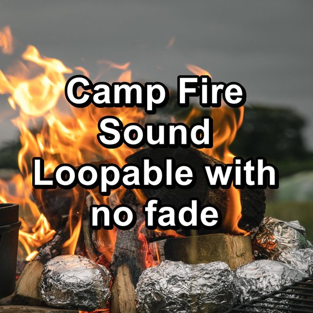 Camp Fire Sound Loopable with no fade