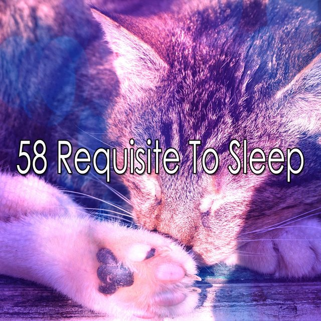 58 Requisite to Sle - EP