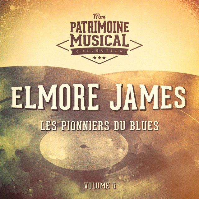 Les pionniers du Blues, Vol. 5 : Elmore James