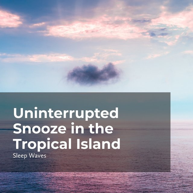Uninterrupted Snooze in the Tropical Island