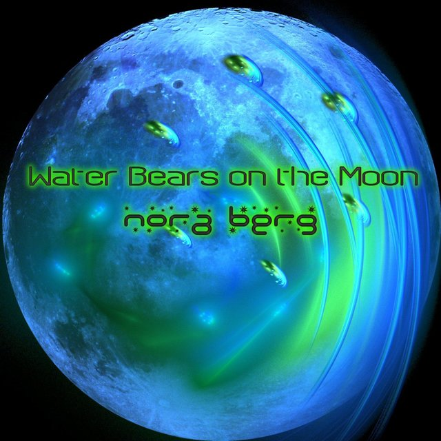 Water Bears on the Moon