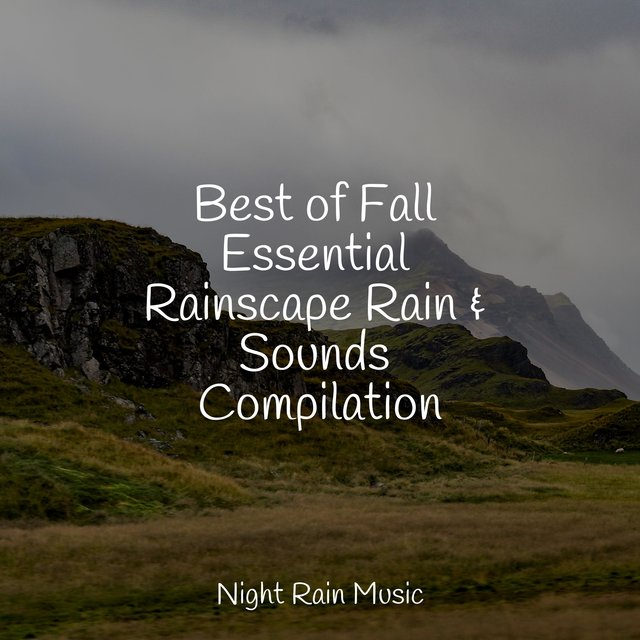 Best of Fall Essential Rainscape Rain & Sounds Compilation