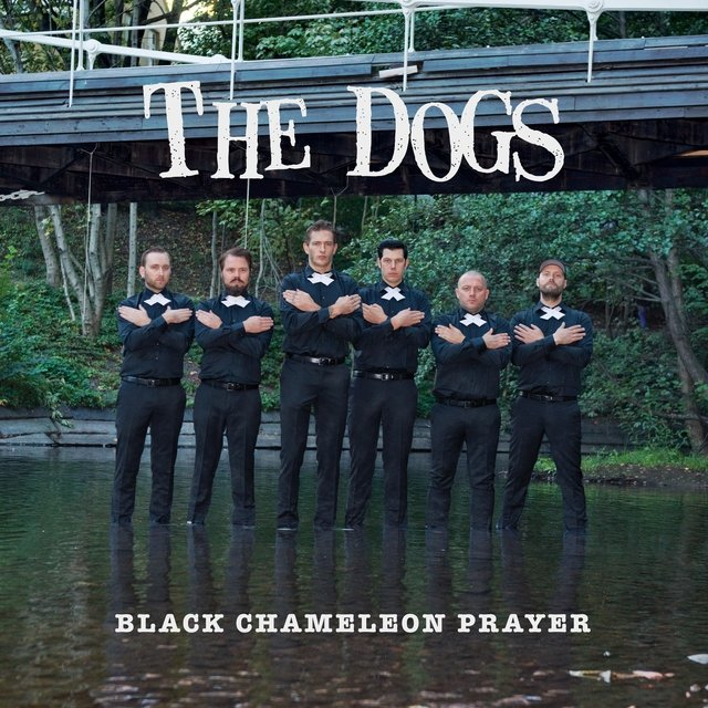 Black Chameleon Prayer