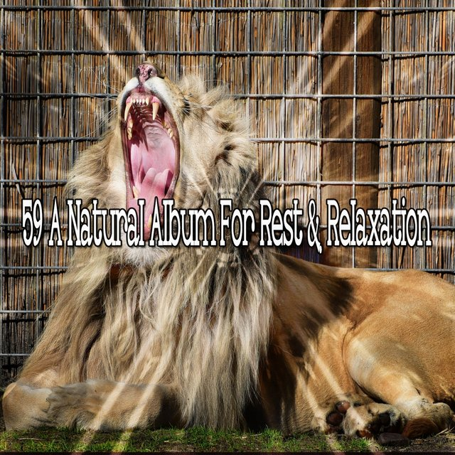 59 A Natural Album for Rest & Relaxation
