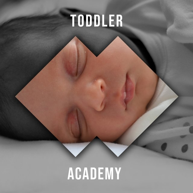 Sleepy Toddler Academy