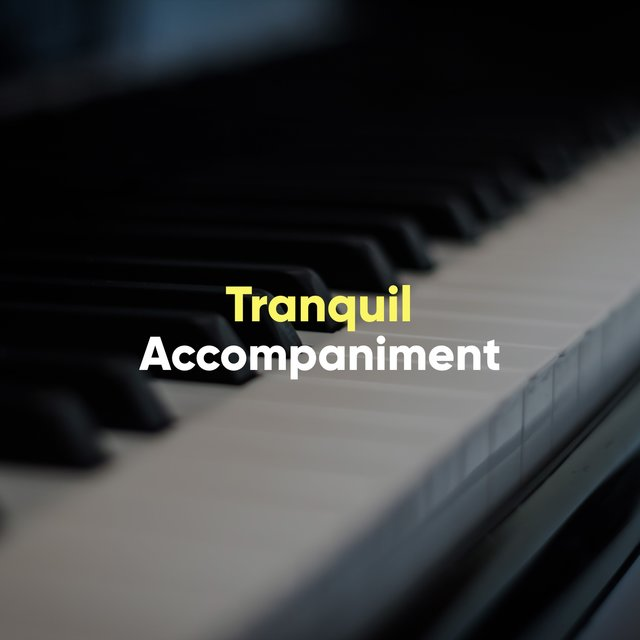 Tranquil Melodic Accompaniment