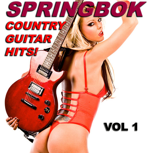 Springbok Country Guitar Hits - Vol 1