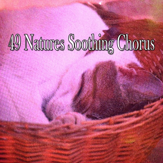 49 Natures Soothing Chorus