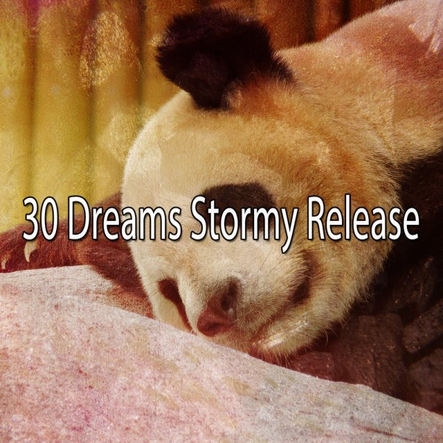 30 Dreams Stormy Release