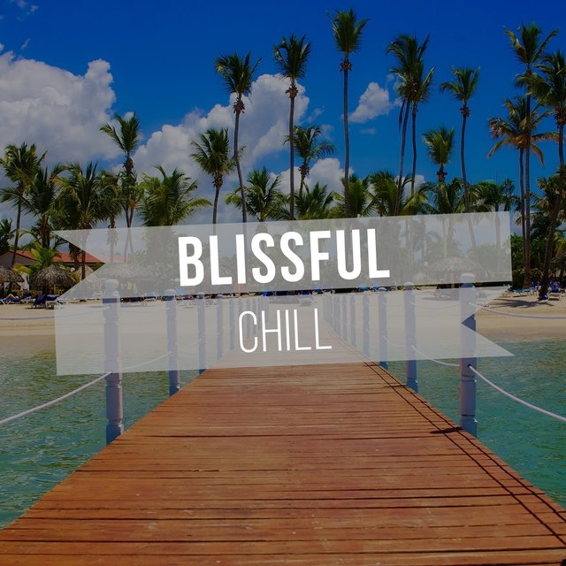 # Blissful Chill
