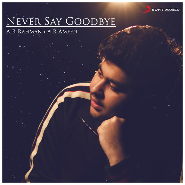 Never Say Goodbye (From