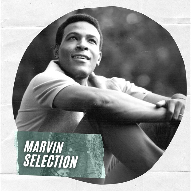 Marvin Selection