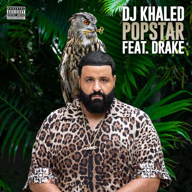 Cover art for album  by DJ Khaled, Drake