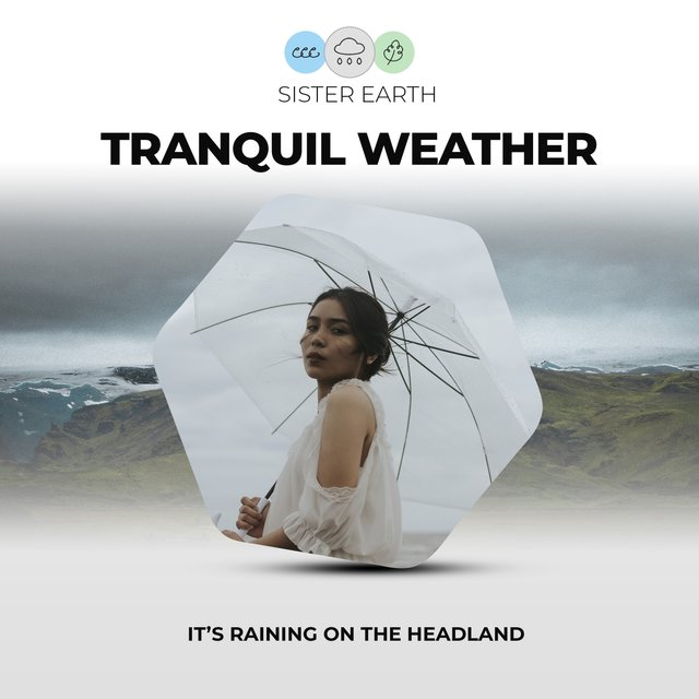 Tranquil Weather: It's Raining on the Headland
